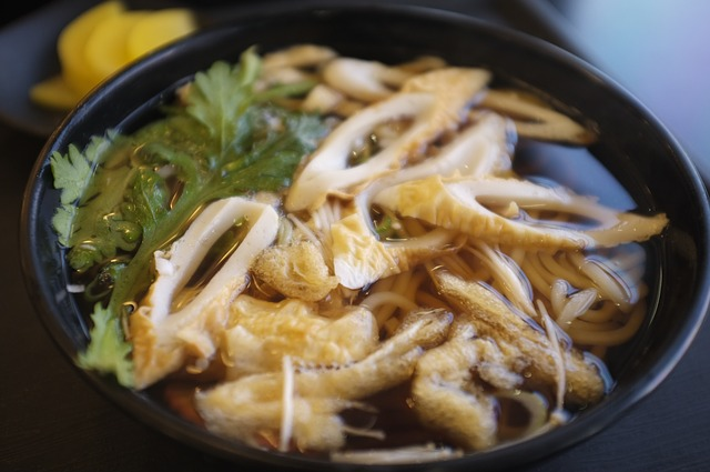 Udon Nudeln Essen Japan Backpacking