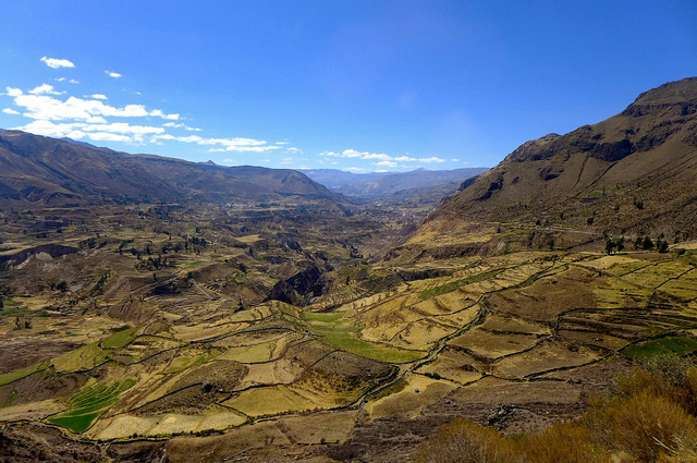 Colca Canyon Trek Peru
