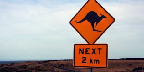 Backpacking in Australien & Neuseeland: Von Auckland bis Cairns
